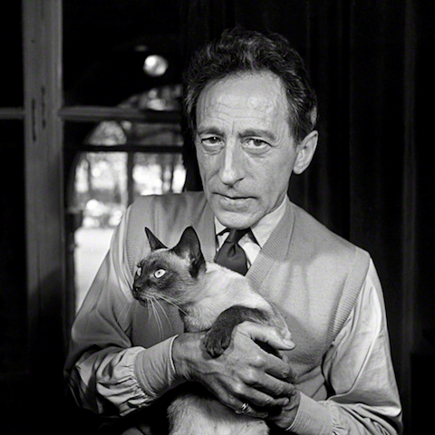 Famous Artists and Their Cats: karoun.png