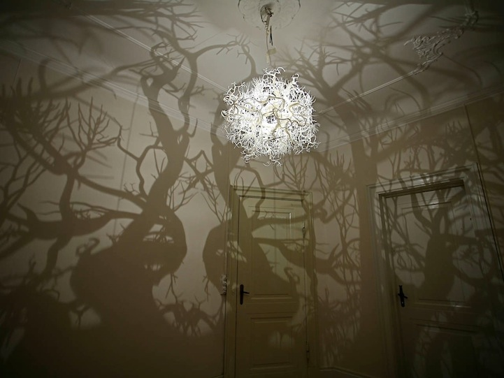 Chandelier Casts Shadow of a Forest of Trees: FormsInNature1.jpg