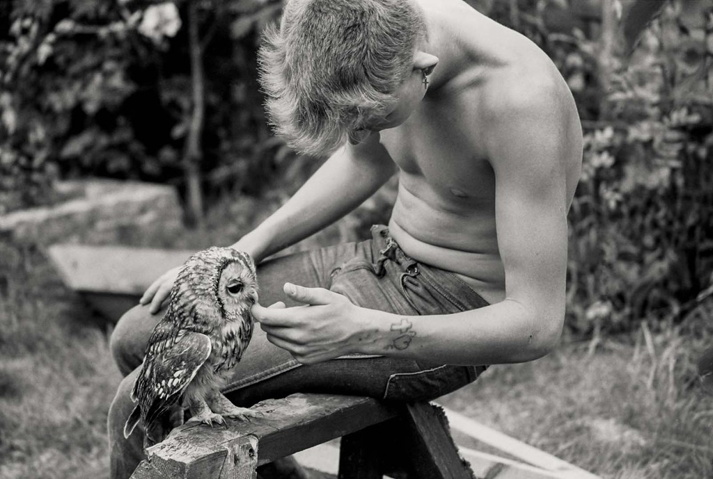 Photographs by Gavin Watson: med_homey-with-the-owl-jpg.jpg