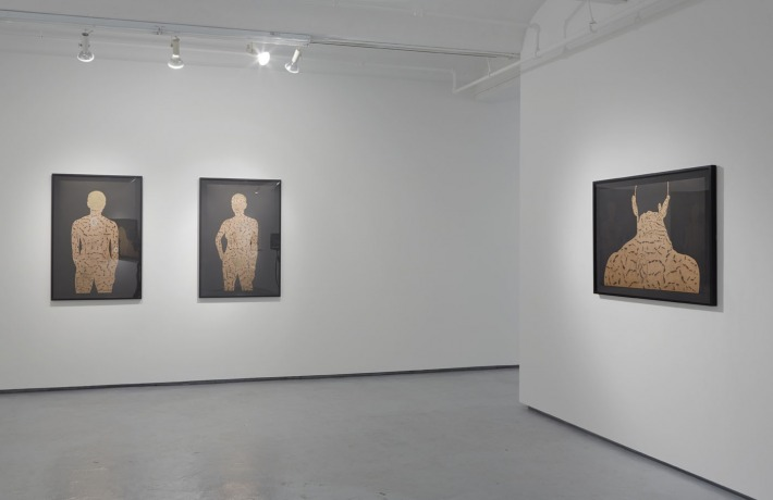 "Toyin Odutola ""My Country Has No Name"" @ Jack Shainman Gallery, NYC: 2013jsgtomycount-d376ebc16950f90.jpg"