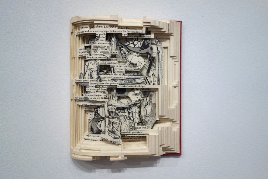 Rebound: Dissections and Excavations in Book Art: Screen-shot-2013-06-03-at-3.46.54-PM.jpg