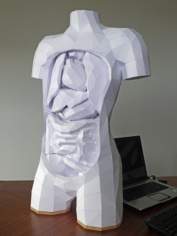 Build Your Own Geometric Torso: paper-1.jpg