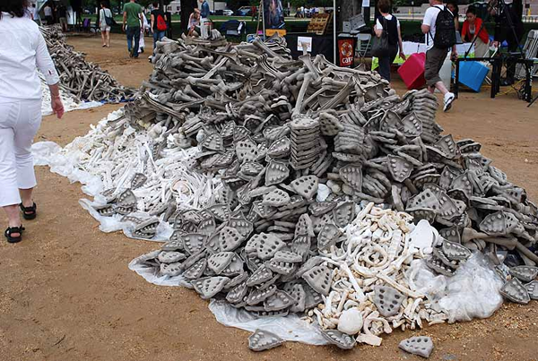 One Million handmade Bones in the National Mall in Washington D.C.: jux_bones_national_mall1.png
