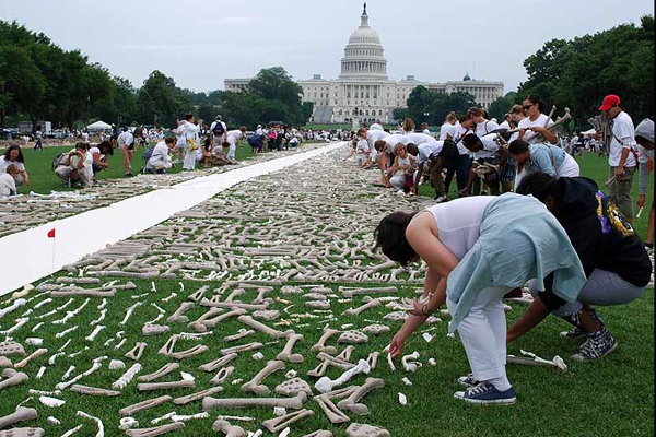One Million handmade Bones in the National Mall in Washington D.C.: jux_bones_national_mall4.png
