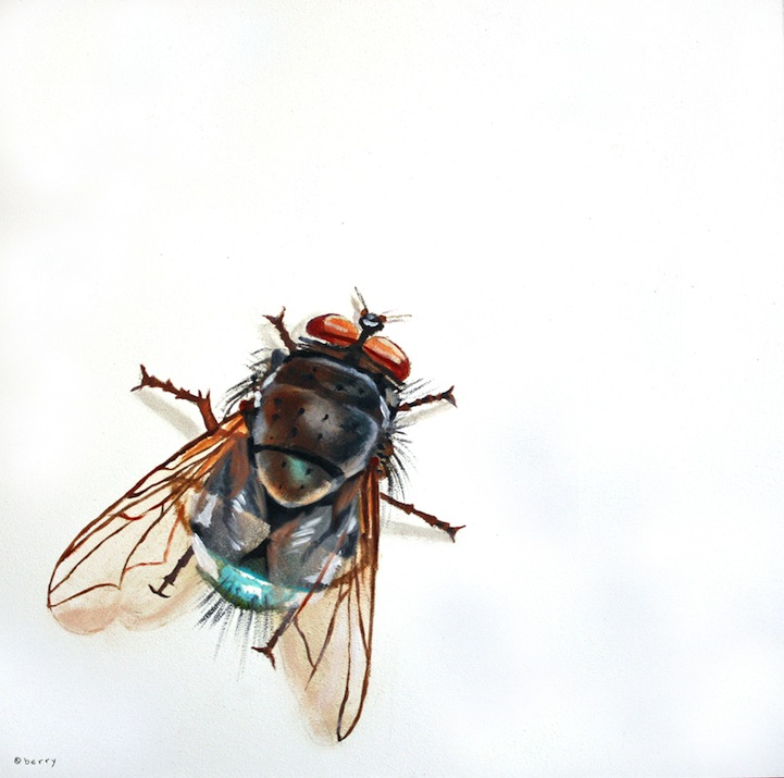 "Suzanne Berry's ""Bug"" Series: SuzanneBerry10.jpg"