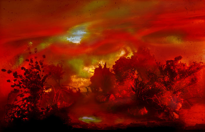 Best of 2013: Kim Keever's Water Tank Diorama Photography: 4217-palm-62-30x44-47x71-20051.jpg
