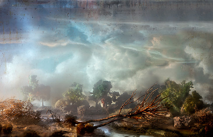 Best of 2013: Kim Keever's Water Tank Diorama Photography: 4225-fallen-tree-30x44-47x71-20051.jpg