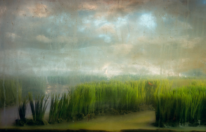 Best of 2013: Kim Keever's Water Tank Diorama Photography: 4302-estuary-16-30x45-47x71-20061.jpg
