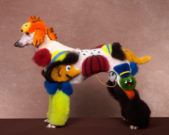 Best of 2013: When Dog Grooming Goes Too Far: Ren-Netherland-photography3.jpg