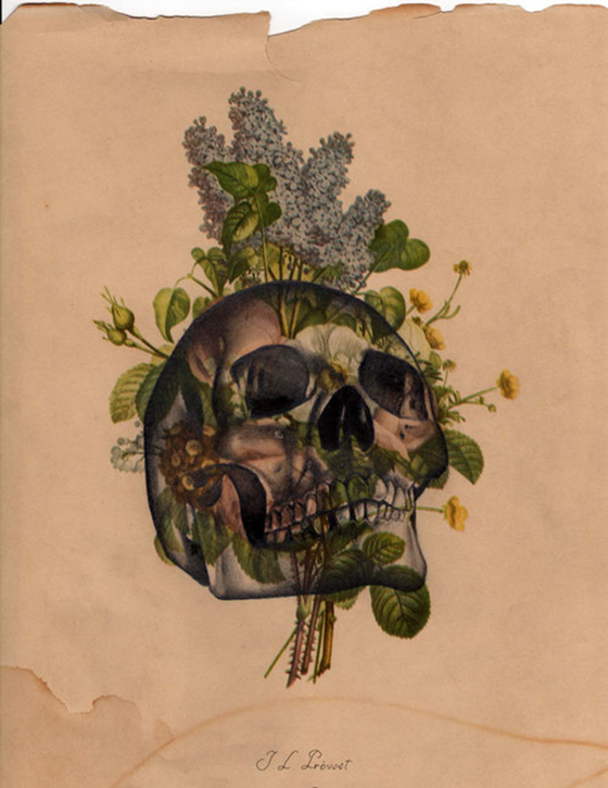 The World of Joseph Martinez: Vintage-Paper-Skull.jpg