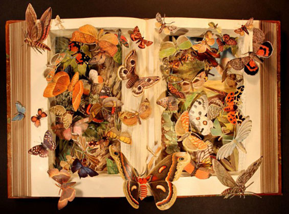 Dissected Book Art by Kerry Miller: carved-3d-books-kerry-miller-designboom02.jpg