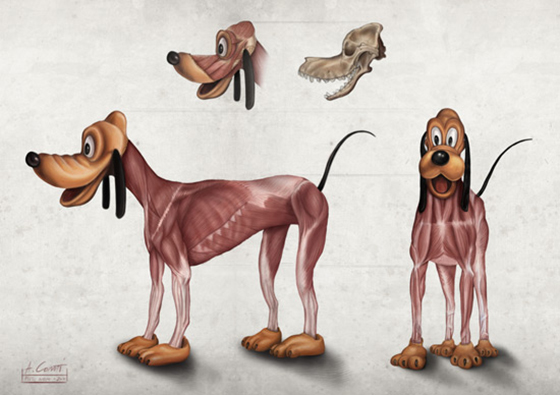 The Anatomy of Disney: plutos_anatomy_alessandro_conti.jpg