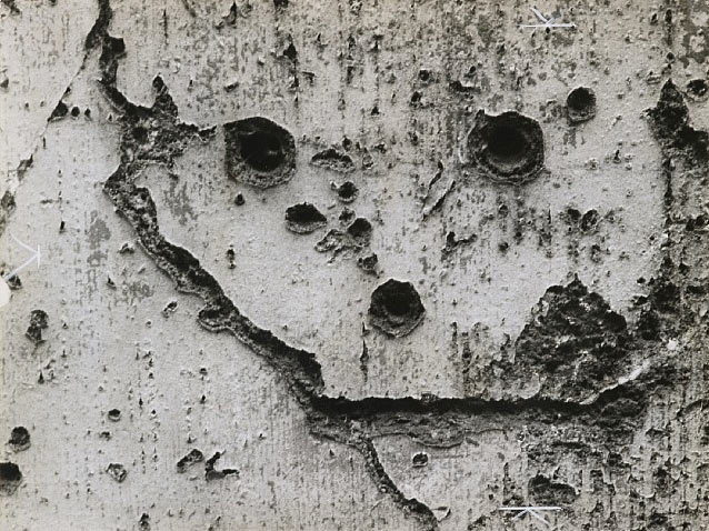 """The Language of the Wall"" by Brassai: Screen-shot-2013-07-30-at-10.41.57-AM.jpg"