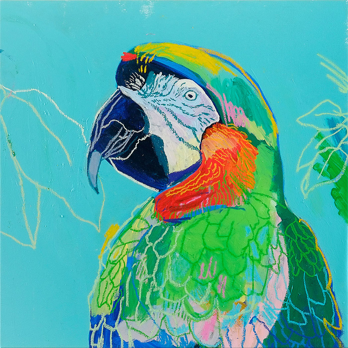 The Paintings of Andy Dixon: AndyDixon-Parrot.jpg