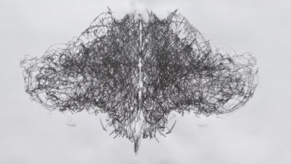 Tony Orrico's Penwald Drawings: shapeimage_3.png