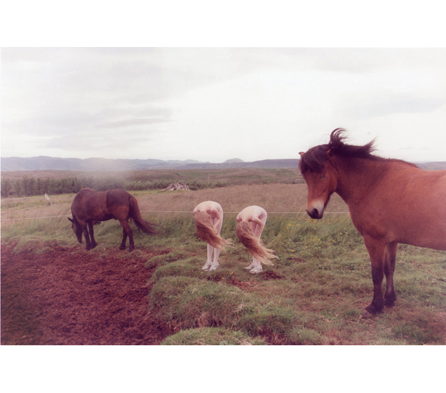 Ariko Inaoka's Photographs of Twins: 2webhorses.jpg