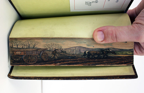 Fore-Edge Painting, Scenes Painted on the Edges of Book Pages: tumblr_msiatt1iIt1rqo4zeo3_500.jpg