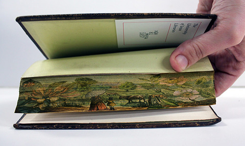 Fore-Edge Painting, Scenes Painted on the Edges of Book Pages: tumblr_msiatt1iIt1rqo4zeo5_500.jpg