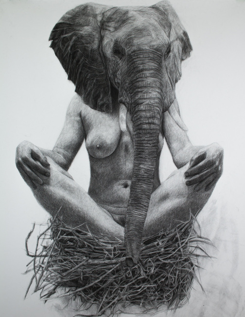 From the Studio of Kelly Blevins: 111_elephantnestforweb.jpg