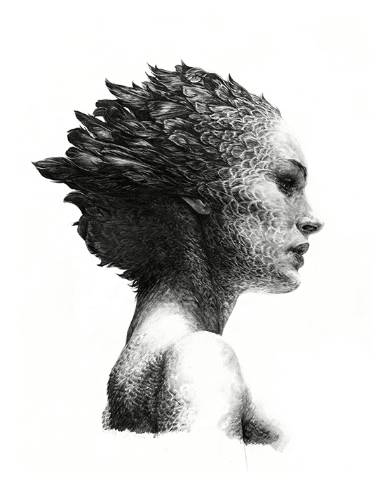Rubert Smissen Mashes Human with Nature: blackswan(rupertsmissen)72.jpg