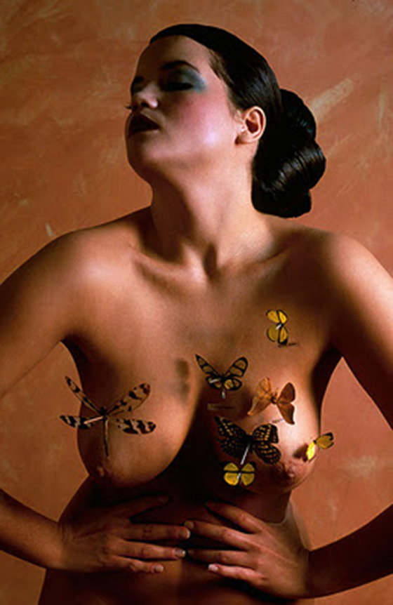 "Alva Bernadine's ""The Butterfly Collector"": ab_1.jpg"