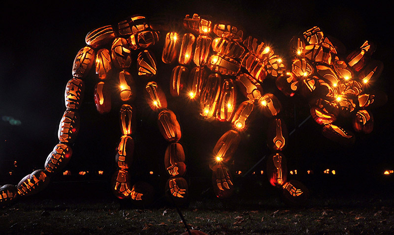 The Best of New York's Great Jack O'Lantern Blaze: blaze-1.jpg