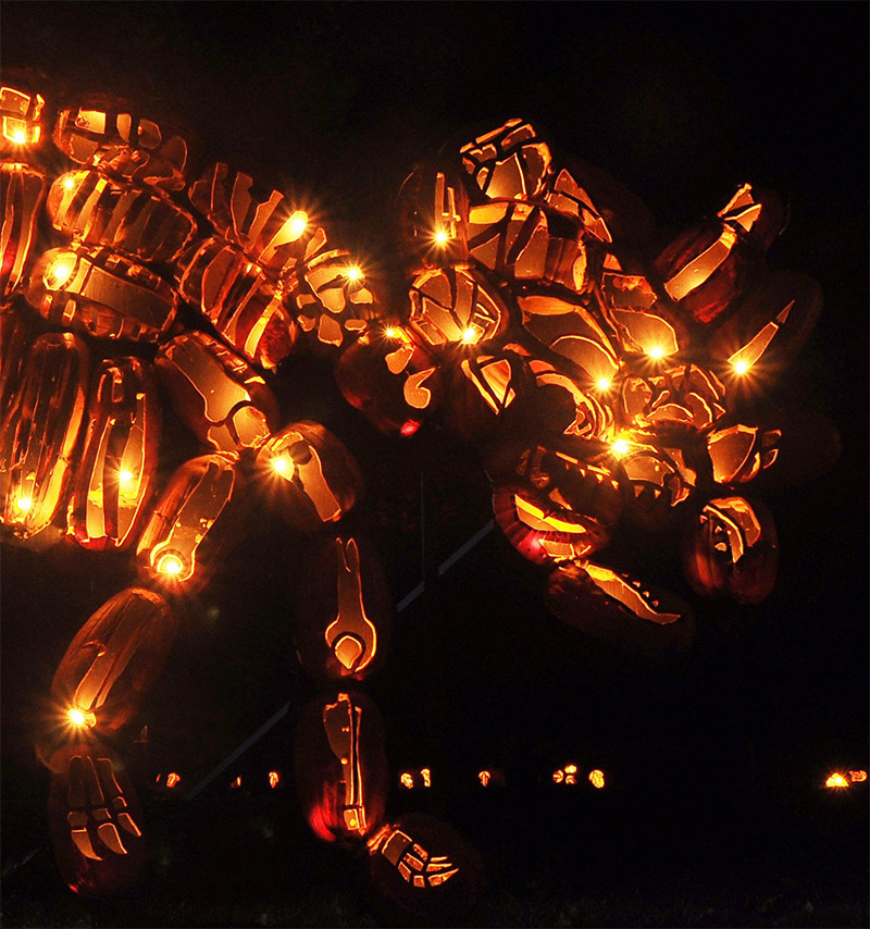 The Best of New York's Great Jack O'Lantern Blaze: blaze-2.jpg