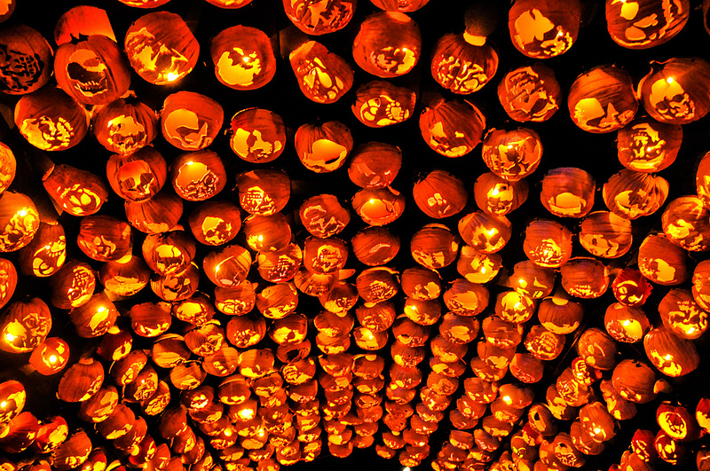 The Best of New York's Great Jack O'Lantern Blaze: blaze-6.jpg