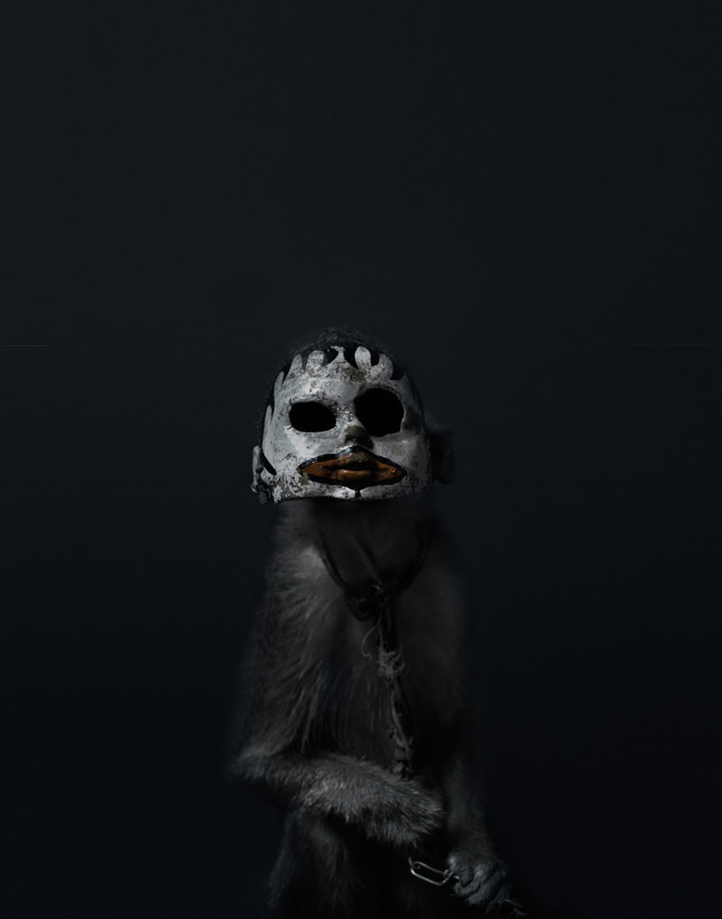 Creepy Photos of Monkeys Wearing Doll Masks: Perttu-Saksa_web16.jpg