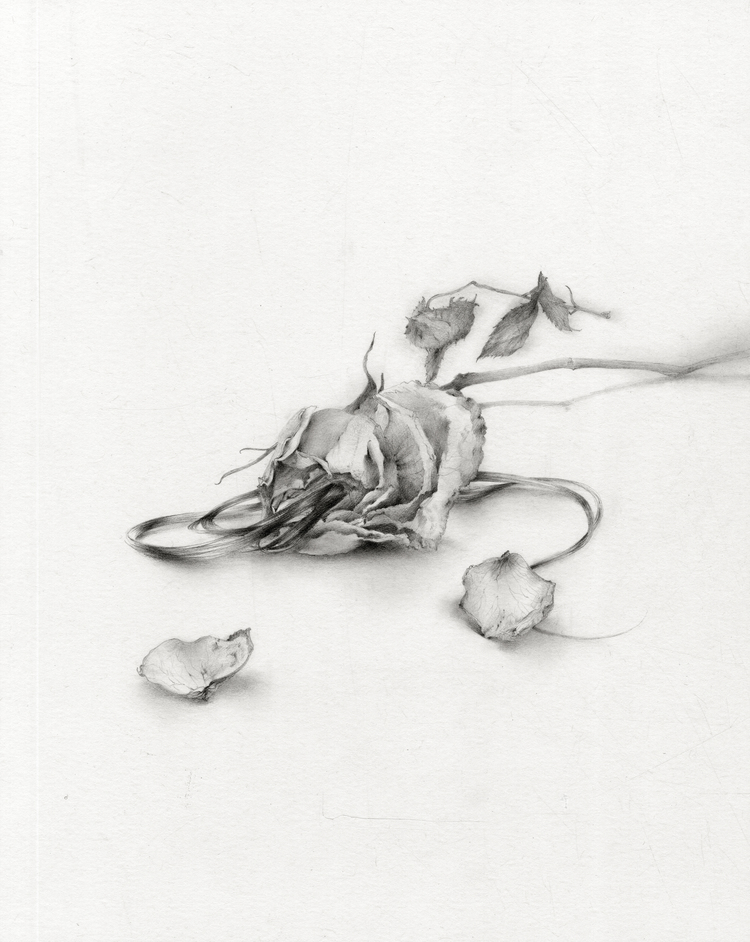 Ling Ly's Delicate Renderings: When you are gone.jpg