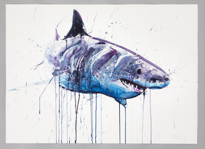 "Dave White ""Aquatic"" @ Lawrence Alkin Gallery, London: Great White Small .jpg"