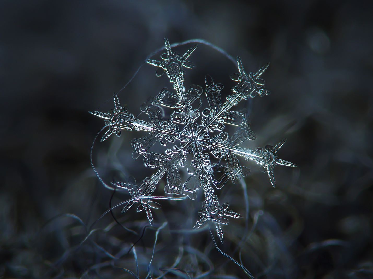 DIY Camera Rig Captures Close-ups of Snowflakes: Juxtapoz-AlexeyKljatov-01.png