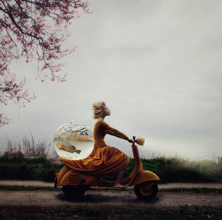 Photographs by Kylli Sparre (aka Sparrek): Screen-shot-2013-11-20-at-2.29.06-PM.jpg