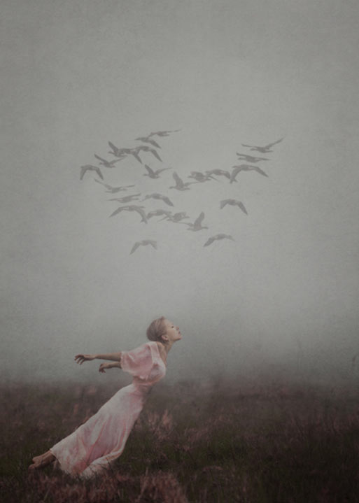 Photographs by Kylli Sparre (aka Sparrek): Screen-shot-2013-11-20-at-2.30.44-PM.jpg