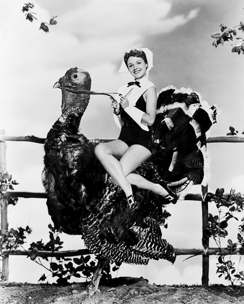 Thanksgiving Pin-Ups: enhanced-buzz-14637-1384282704-0.jpg
