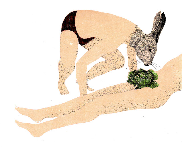 Marion Fayolle's Surreal Perversions: lapin.jpg