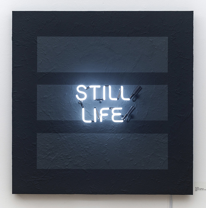 New Neon: Light, Paint & Photography @ Bedford Gallery, Walnut Creek: Still Life.jpg