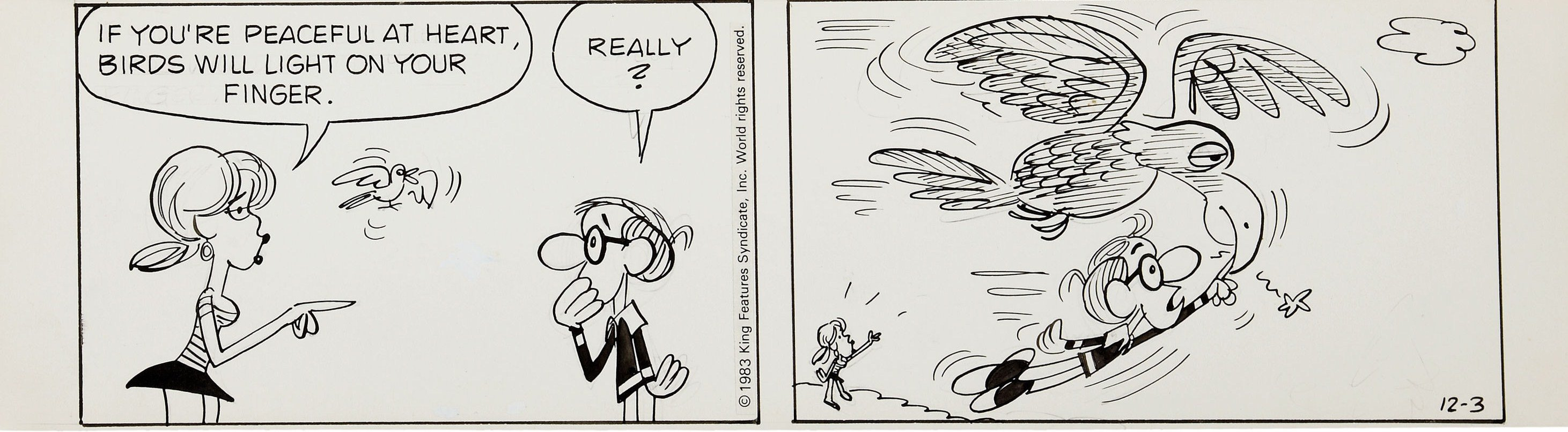 'Inside Woody Allen,' a comic strip from 1976-84: WoodyA3.jpg