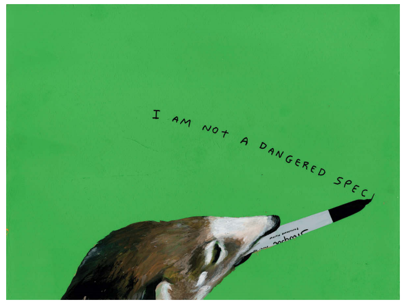 """Animals With Sharpies"": Michael Dumontier & Neil Farber : Screen shot 2014-01-15 at 9.31.36 AM.png"
