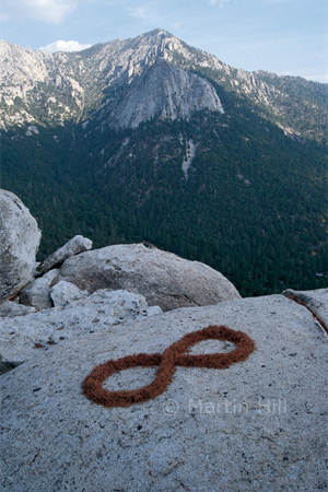 Martin Hill's Environmental Sculpture Photography: pine_needle_infinity_p.jpg