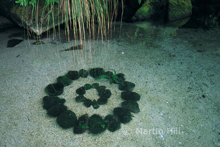 Martin Hill's Environmental Sculpture Photography: underwater_stone_circle_p.jpg