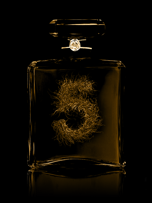 Txaber's Chanel No.5 Typography: 2.png