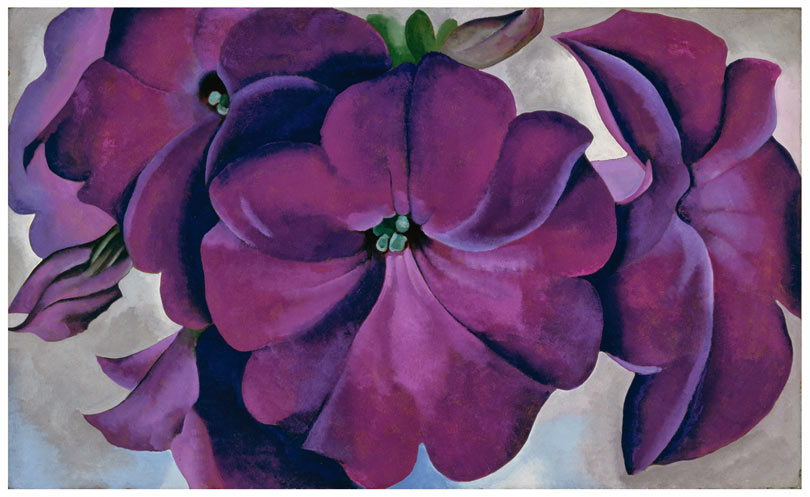 Modern Nature: Georgia O'Keeffe and Lake George @ the De Young Museum: Petunias.jpg