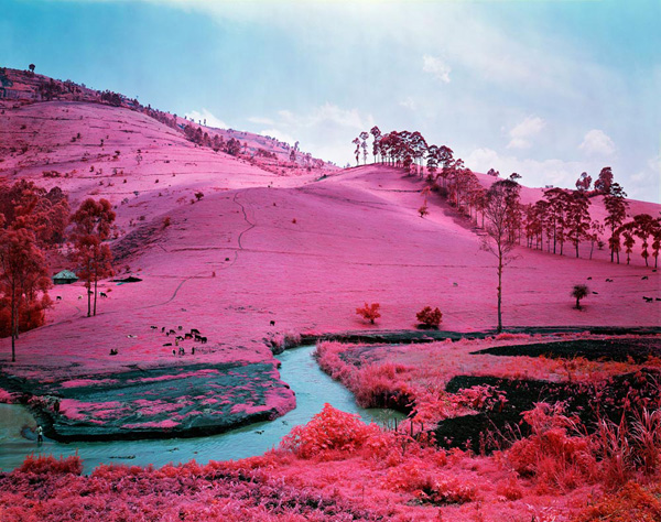 "Using infrared film to capture ""The Enclave"" by Richard Mosse: juxtapoz_Richard_Mosse2.jpg"