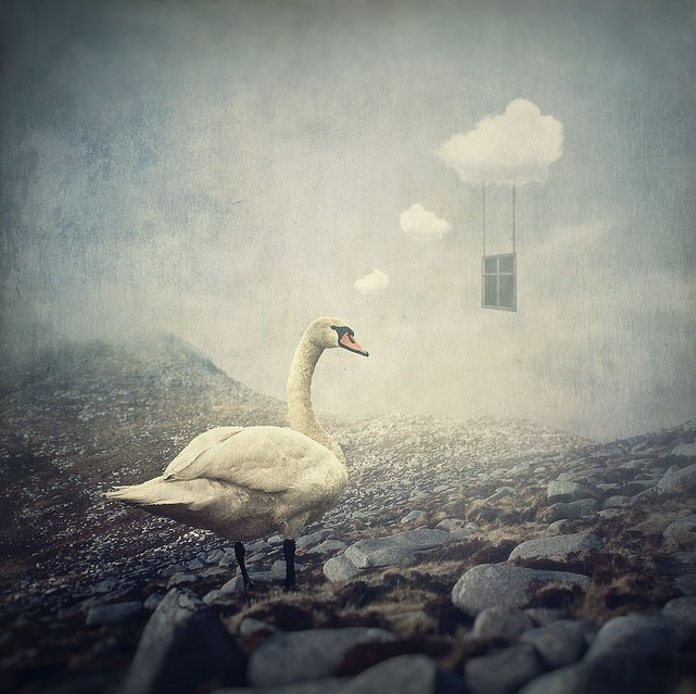 "Michael Vincent Manalo: ""Chronicles from the Great Reveries"": Screen shot 2014-02-24 at 4.23.59 PM.png"