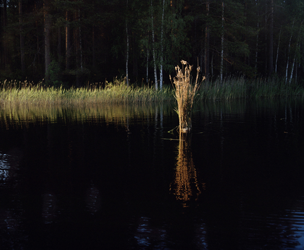 Finnish Seniors Photographed as Elements of the Landscape: Ikonen_Hjorth10.jpg