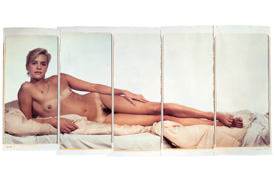 Chuck Close: Nudes 1967-2014 @ Pace Gallery, NYC: image.jpg