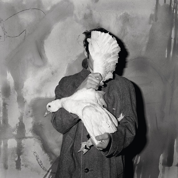 "video: Roger Ballen's ""Asylum of the Birds"": juxtapoz_roger_ballen2.jpg"