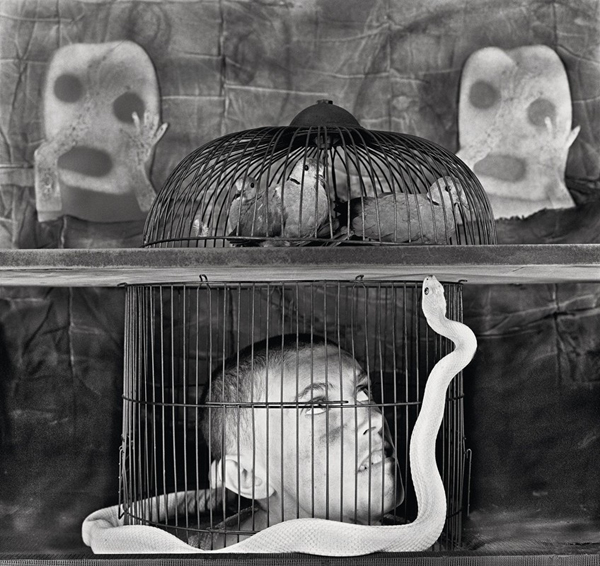"video: Roger Ballen's ""Asylum of the Birds"": juxtapoz_roger_ballen3.jpg"