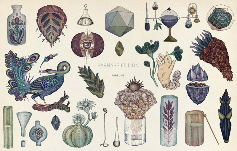 The Scientific and Anatomical Illustrations of Katie Scott: Katie-Scott-3.jpg